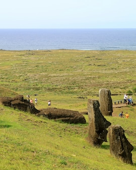 Molti visitatori sul vulcano rano raraku sono pieni di statue moai giganti abbandonate e abbandonate, isola di pasqua, cile