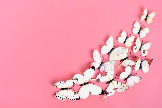 Moltitudine di farfalle di cavolo su sfondo rosa