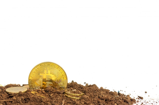 Monete d'oro o bitcoin sul terreno denaro virtuale
