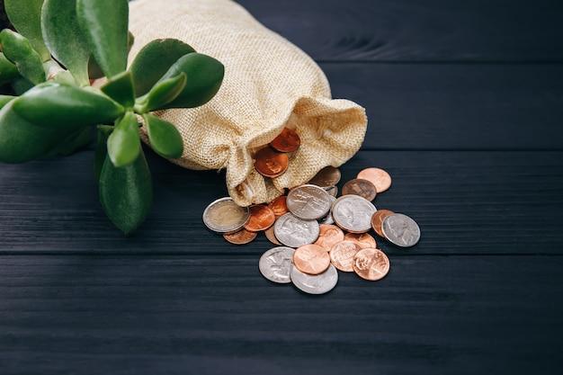 Monete di denaro sparse dalla borsa. risparmio di denaro per affari, finanziario