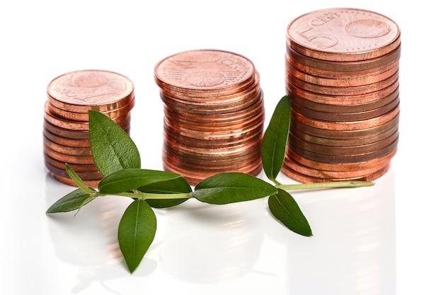 Monete in euro e germoglio verde