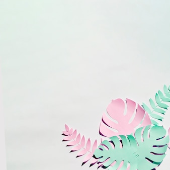 Monstera lascia con copia spazio su sfondo grigio