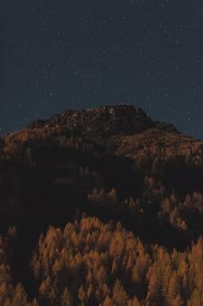 Montagna di paesaggio con gli alberi
