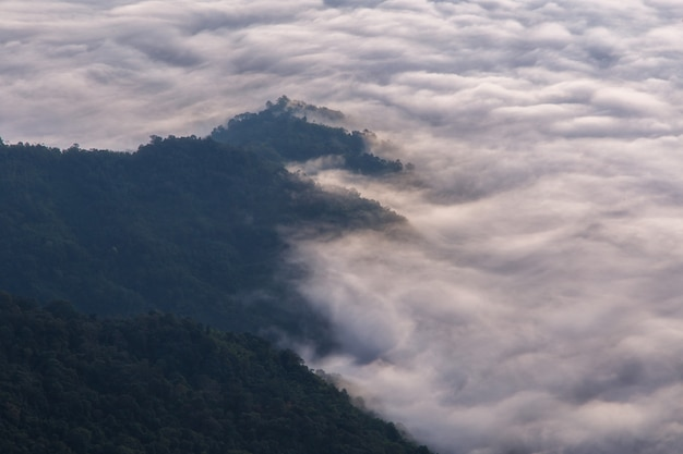 Montagna di pha tung in tempo di alba, chiang rai