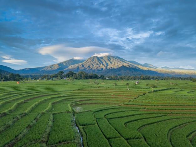 Montagna verde della natura di bellezza del paesaggio aereo dell'indonesia