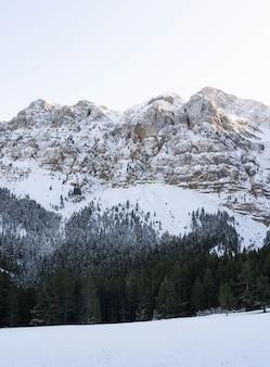 Montagne con neve e alcuni alberi nelle alpi