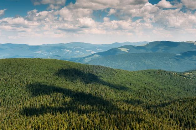 Montagne d'estate