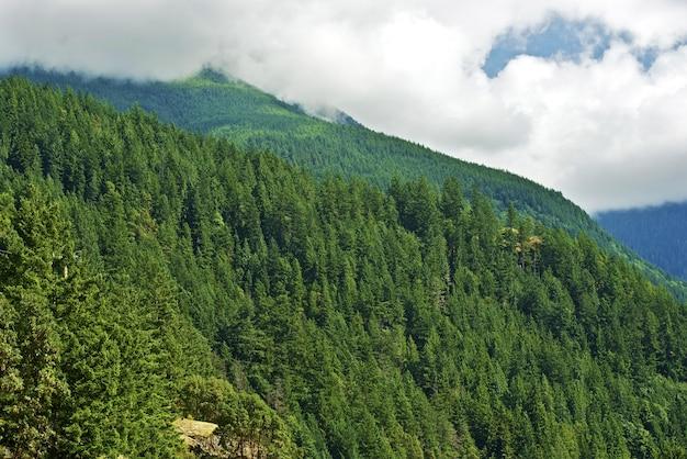 Montagne della columbia britannica