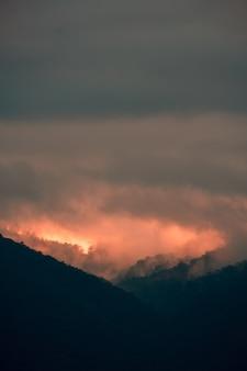 Montagne nebbiose coperte di alberi catturati in kenya, nairobi, samburu