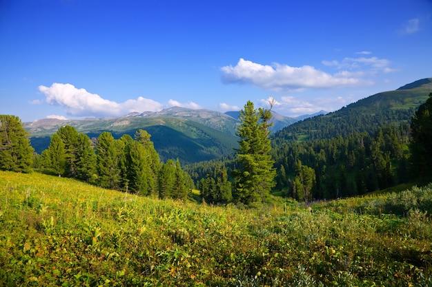 Montagne paesaggio