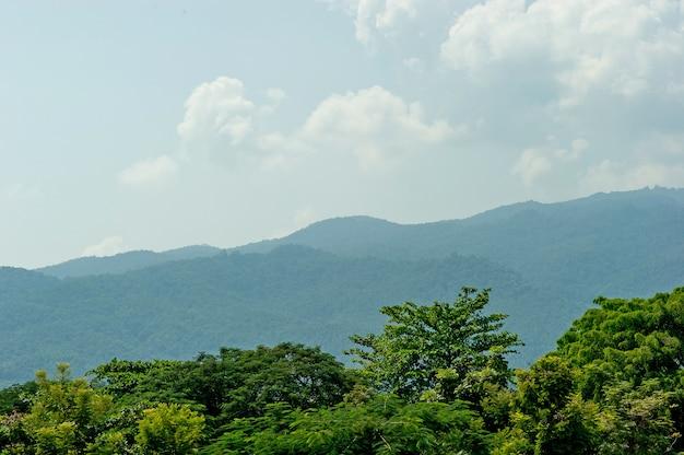 Montagne verdi fertili sulle pianure dell'inverno, concetto di turismo di montagna con lo spazio della copia.