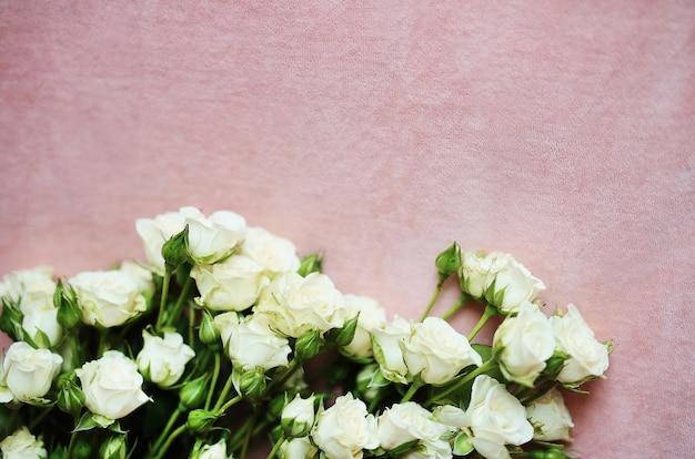 Morbido sfondo rosa con piccole rose bianche per carta da parati e biglietti di auguri