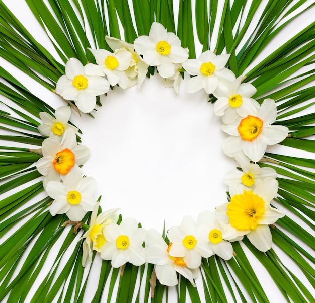 Motivo floreale, cornice rotonda di fiori daffodil su una delle foglie verdi