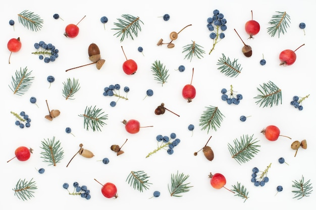 Motivo floreale foresta di frutti di bosco, mele, ghiande e abete rosso sulla superficie bianca