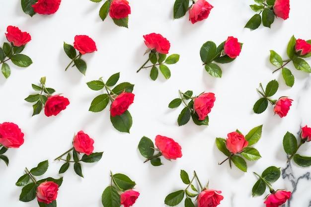 Motivo floreale senza soluzione di continuità fatto di fiori di rose rosse, foglie verdi, rami