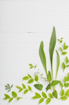 Motivo floreale su legno bianco