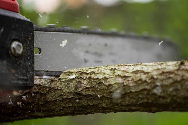 Motosega in azione tagliando legno. tronco d'albero taglio uomo, segatura volare ai lati