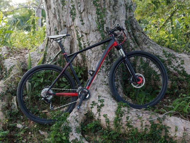 Mountain bike vicino all'albero nella foresta.