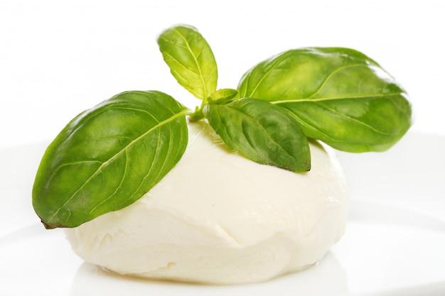 Mozarella bianca con foglie di menta