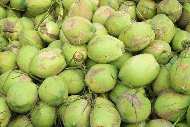 Mucchio delle noci di cocco giovani fresche tropicali che vendono per il succo di cocco