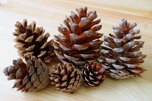 Mucchio delle pigne asciutte naturali di varie dimensioni isolate sulla tavola di legno marrone chiaro