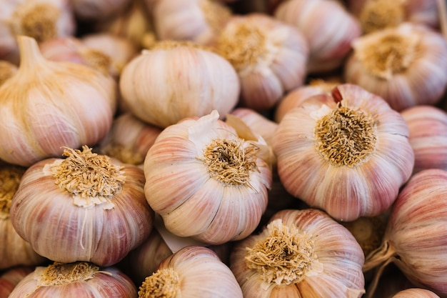 Mucchio di bulbi di aglio