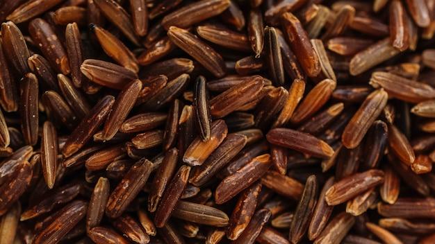 Mucchio di riso integrale