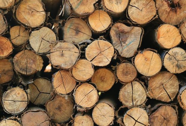 Mucchio di tronchi di legno tagliato per sfondo, banner o texture