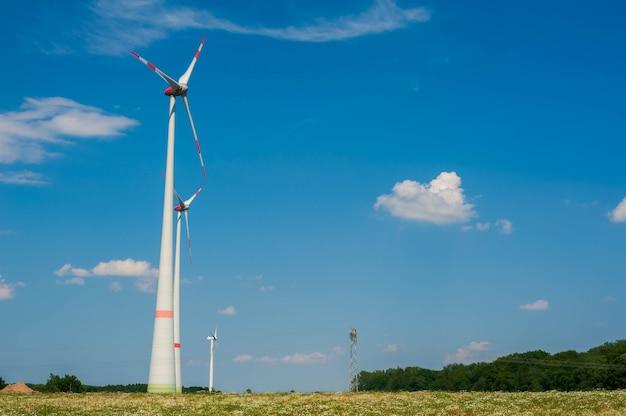 Mulini a vento contro il cielo blu. campi di papavero e camomilla in europa.
