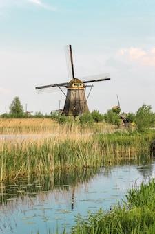 Mulini a vento olandesi tradizionali con erba verde in primo piano, paesi bassi