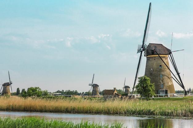 Mulini a vento olandesi tradizionali con erba verde nella priorità alta, paesi bassi