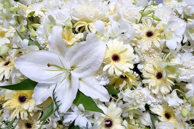 Multi fiore sul muro