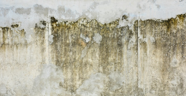 Muro di cemento sporco