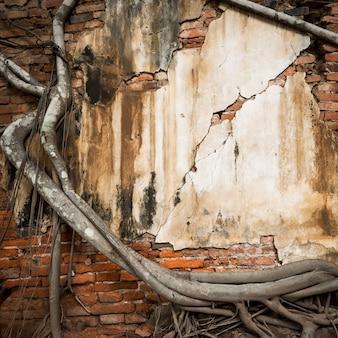 Muro di mattoni con tronco d'albero