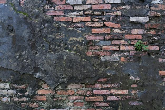 Muro di mattoni d'epoca