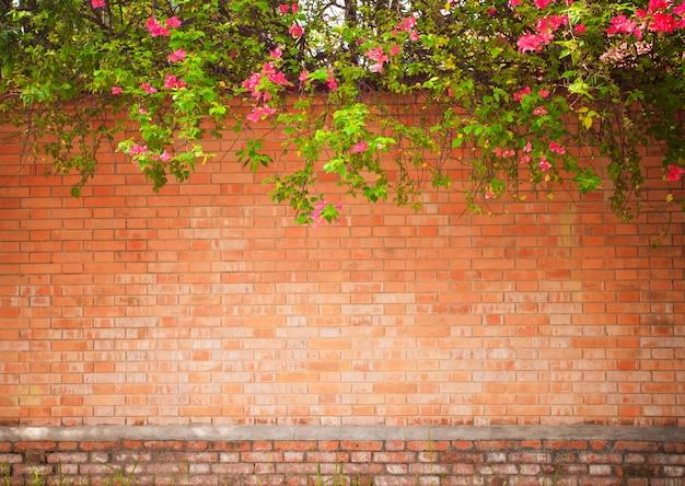 Muro grunge. sfondo naturale