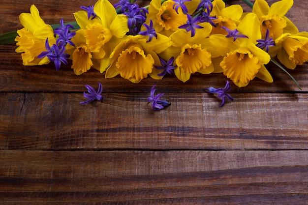 Narciso giallo o giunchiglia