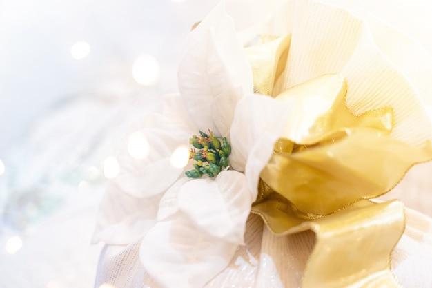 Nastro del fiore bianco di natale con bokehç