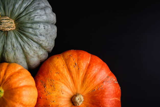 Natura morta con copia spazio di vari tipi di zucca in colore arancione e verde su legno nero