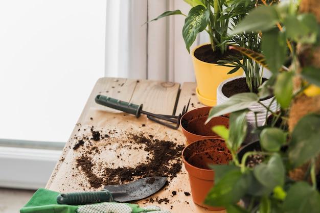 Natura morta con il concetto di giardinaggio