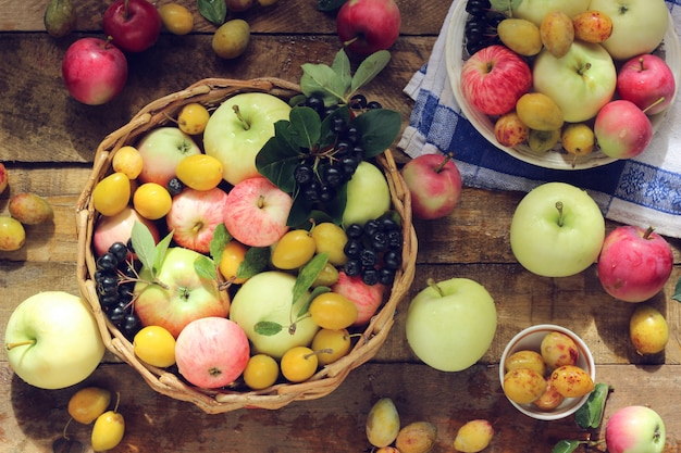Natura morta con mele di diverse varietà, aronia e prugne gialle sul tavolo, vista dall'alto.