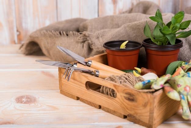 Natura morta con oggetti da giardinaggio