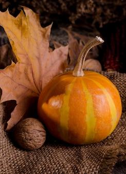 Natura morta rurale lunatica scura con zucche arancio brillante, girasole, physalis e foglie di autunno colorate. composizione autunnale su una vecchia superficie di legno.