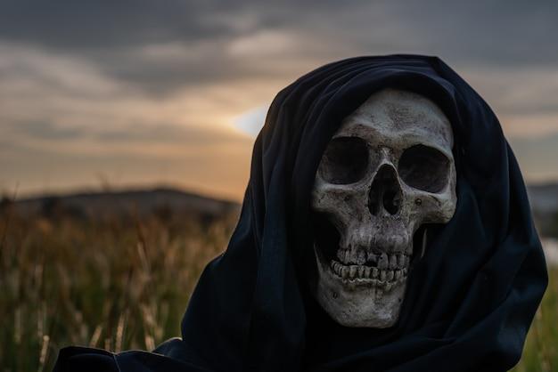 Natura morta, teschi umani e ossa appiattiti sull'erba secca nel campo che ha poca luce.