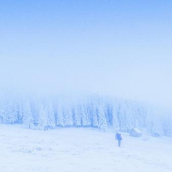 Nebbia fantastica in montagna