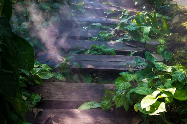 Nebbiosa mattina sul vapore con ponte di legno,