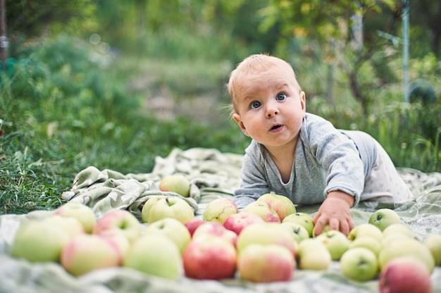 Neonato adorabile che mangia mela che gioca nel giardino. bambino divertendosi sul picnic di famiglia nel giardino estivo. i bambini mangiano frutta. nutrizione sana per il bambino piccolo. capretto con mele