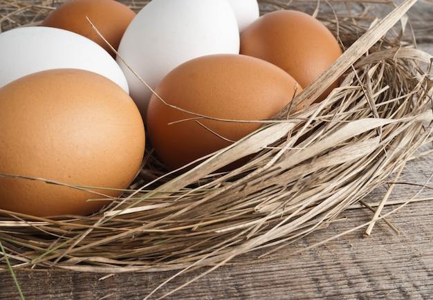 Nido con uova