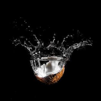 Noce di cocco che si tuffa nell'acqua