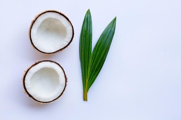 Noce di cocco con foglia su sfondo bianco.